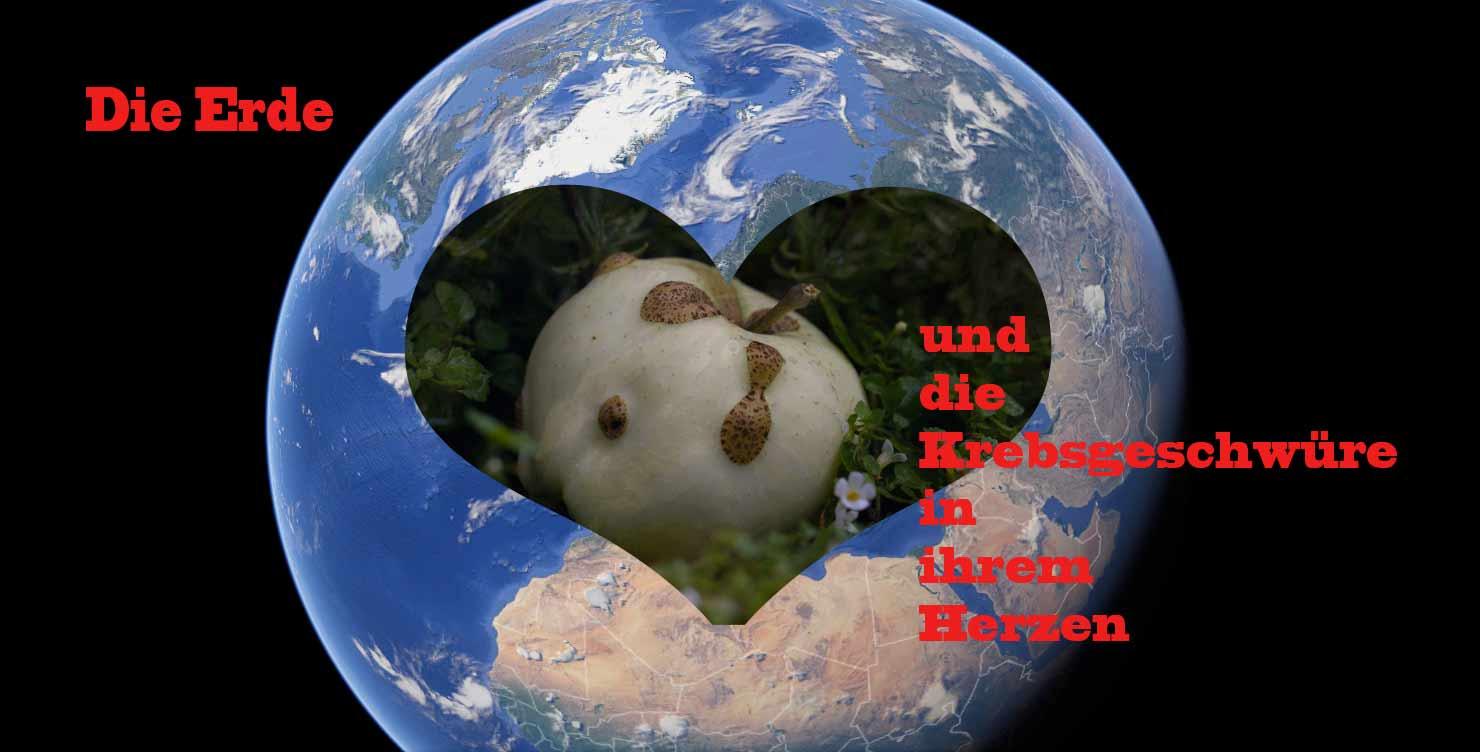 Leidende Erde