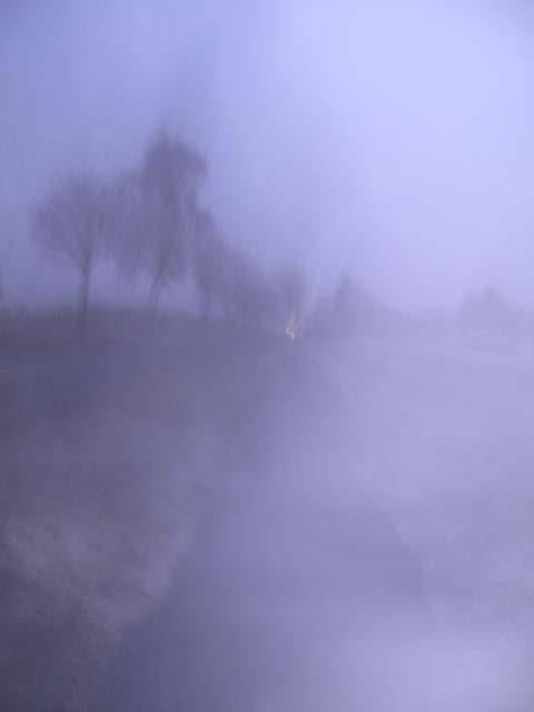 Vertrauen im Nebel