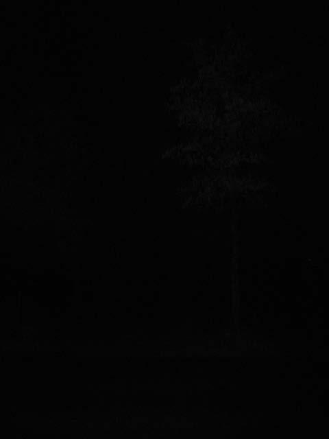 dunkle Nacht