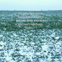 Kinder Gottes (Psalm 2)