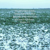 Kinder Gottes (Psalm 2)