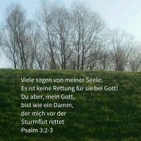 Gott ist wie ein Damm gegen die Sturmflut (Psalm 3)
