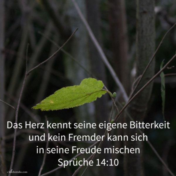 Das Herz kennt seine eigene Bitterkeit ( Sprüche 14, 10 )