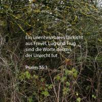 Frevel und Trug sind die Worte seines Mundes; er hat es aufgegeben, verständig zu sein, Gutes zu tun ( Psalm 36, 3 )