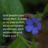 Die Worte Jehovas sind reine Worte ( Psalm 12, 6-7 )