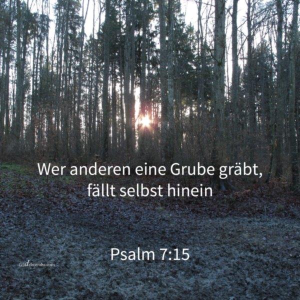 Wer anderen eine Grube gräbt fällt selbst hinein ( Psalm 7 )