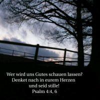 Du Gott, lässt mich in Sicherheit wohnen (Psalm 4)