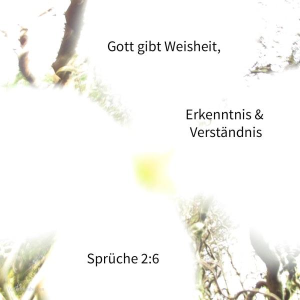 Denn Jehova gibt Weisheit; aus seinem Munde kommen Erkenntnis und Verständnis ( Sprüche 2,6 )