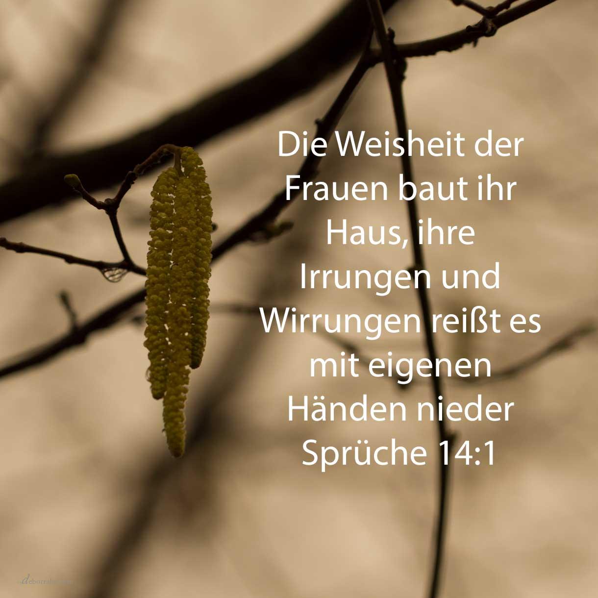 Der Weiber Weisheit baut ihr Haus, und ihre Narrheit reißt es mit eigenen Händen nieder ( Sprüche 14,1 )
