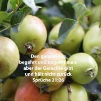Den ganzen Tag begehrt und begehrt man,j aber der Gerechte gibt und hält nicht zurück ( Sprüche 52,26 )