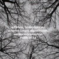 Welche ihre Zungen geschärft haben gleich einem Schwerte, ihren Pfeil angelegt, bitteres Wort, um im Versteck zu schießen auf den Unsträflichen: plötzlich schießen sie auf ihn und scheuen sich nicht ( Psalm 64:3 )