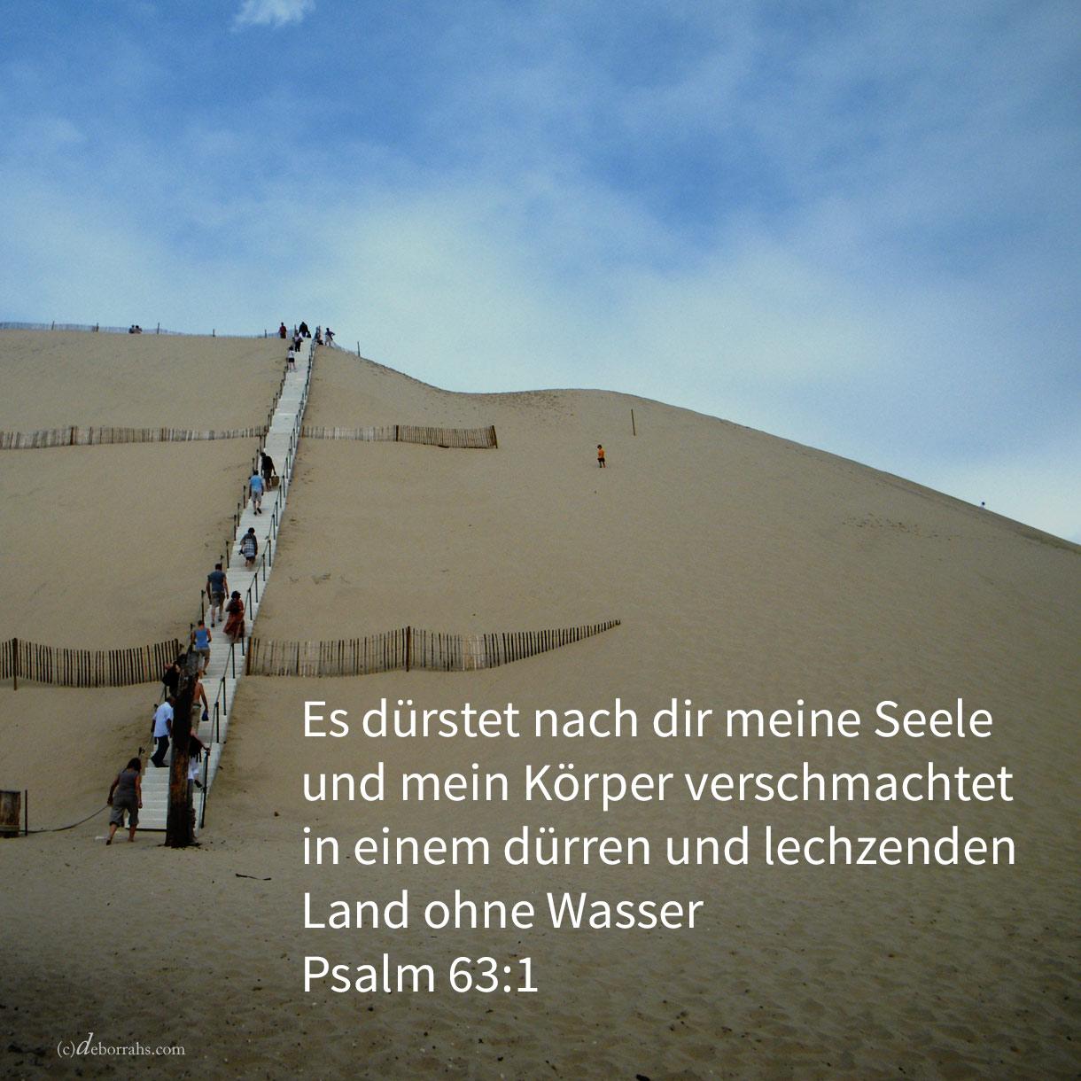 Es dürstet nach dir meine Seele, nach dir schmachtet mein Fleisch in einem dürren und lechzenden Lande ohne Wasser ( Psalm 63,1 )