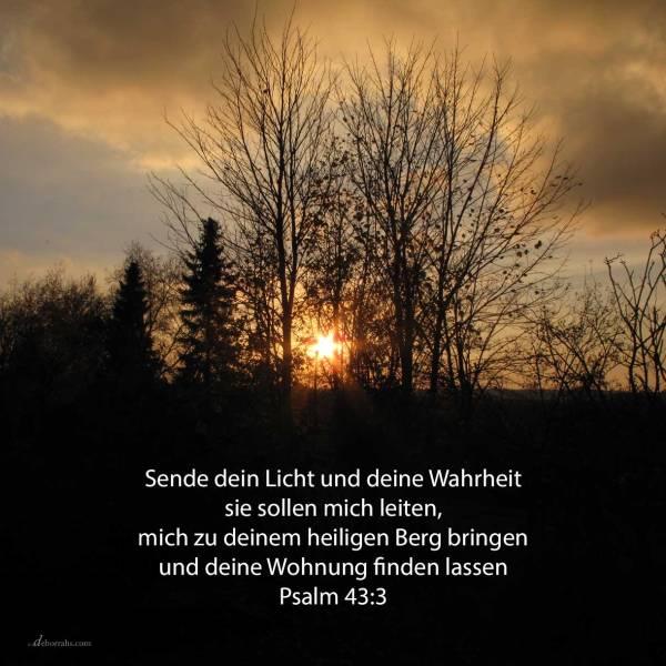 Sende dein Licht und deine Wahrheit; sie sollen mich leiten, mich bringen zu deinem heiligen Berge und zu deinen Wohnungen ( Psalm 43,3 )
