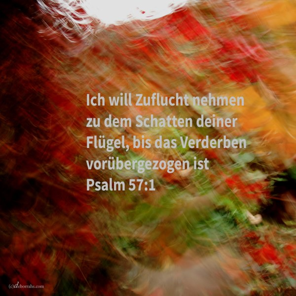 Sei gnädig, o Gott, sei mir gnädig! denn zu dir nimmt Zuflucht meine Seele, und ich will Zuflucht nehmen zu dem Schatten deiner Flügel, bis vorübergezogen das Verderben ( Psalm 57,1 )