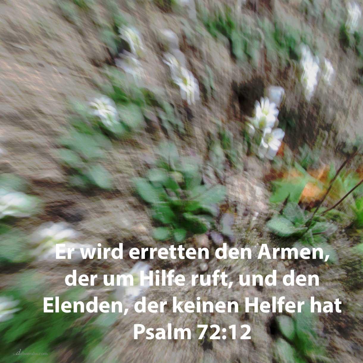 Denn erretten wird er den Armen, der um Hilfe ruft, und den Elenden, der keinen Helfer hat ( Psalm 72,12 )