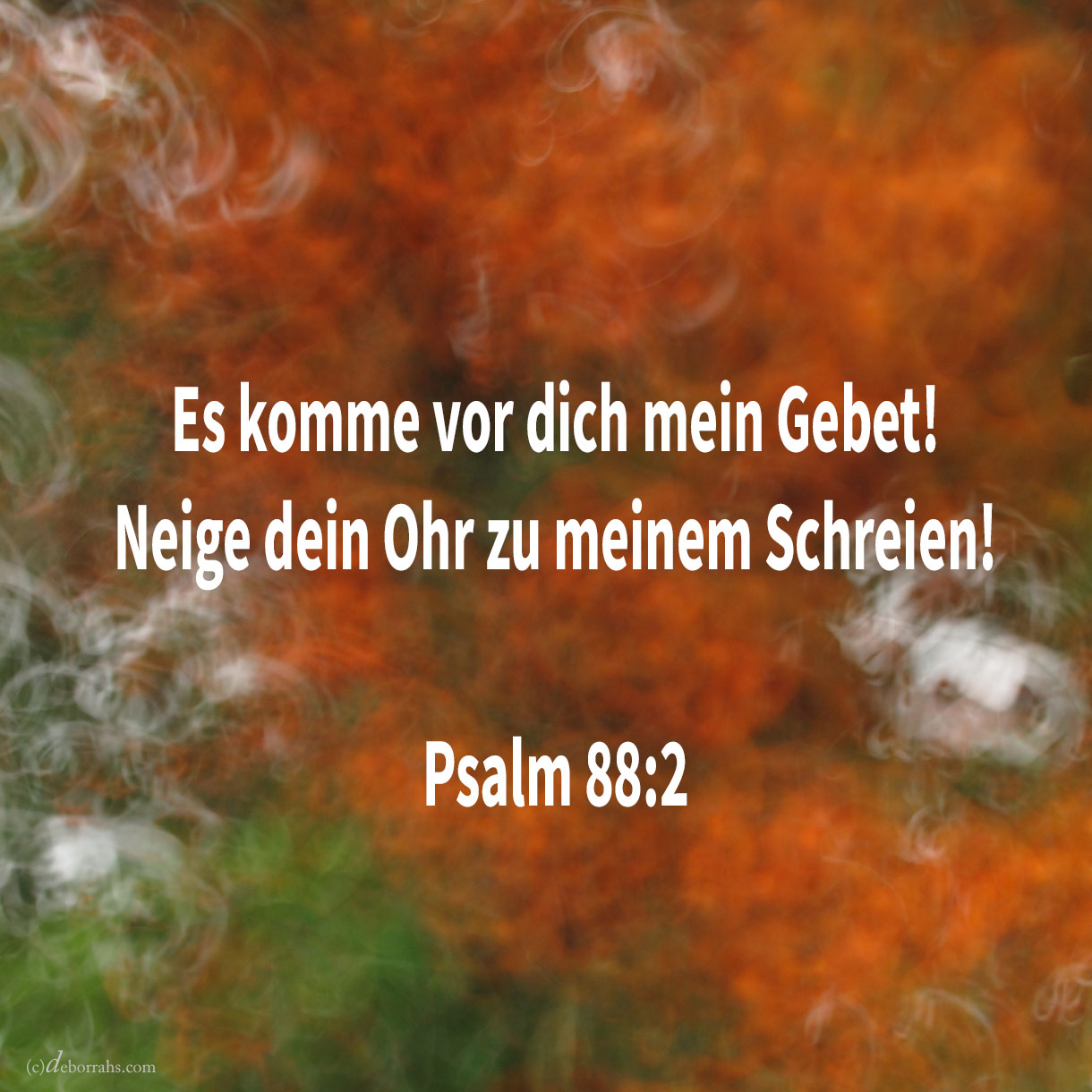 Es komme vor dich mein Gebet! neige dein Ohr zu meinem Schreien ( Psalm 88:2 )