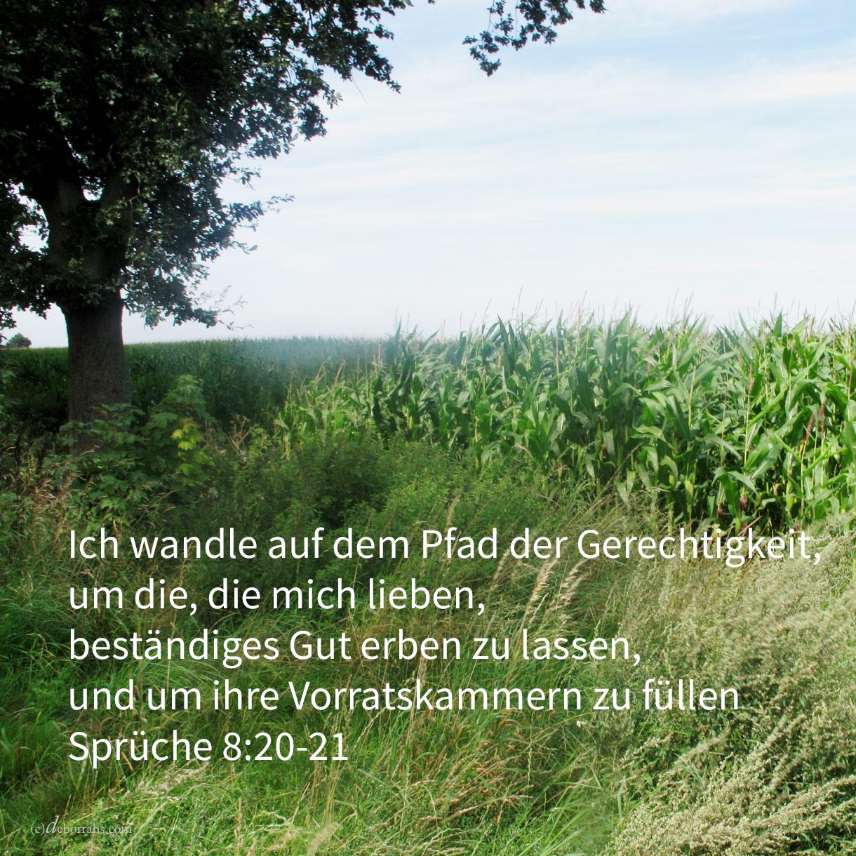Ich wandle auf dem Pfade der Gerechtigkeit, mitten auf den Steigen des Rechts; um die, die mich lieben, beständiges Gut erben zu lassen, und um ihre Vorratskammern zu füllen ( Sprüche 8,20-21)