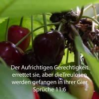 Der Aufrichtigen Gerechtigkeit errettet sie, aber die Treulosen werden gefangen in ihrer Gier ( Sprüche 11,6 )