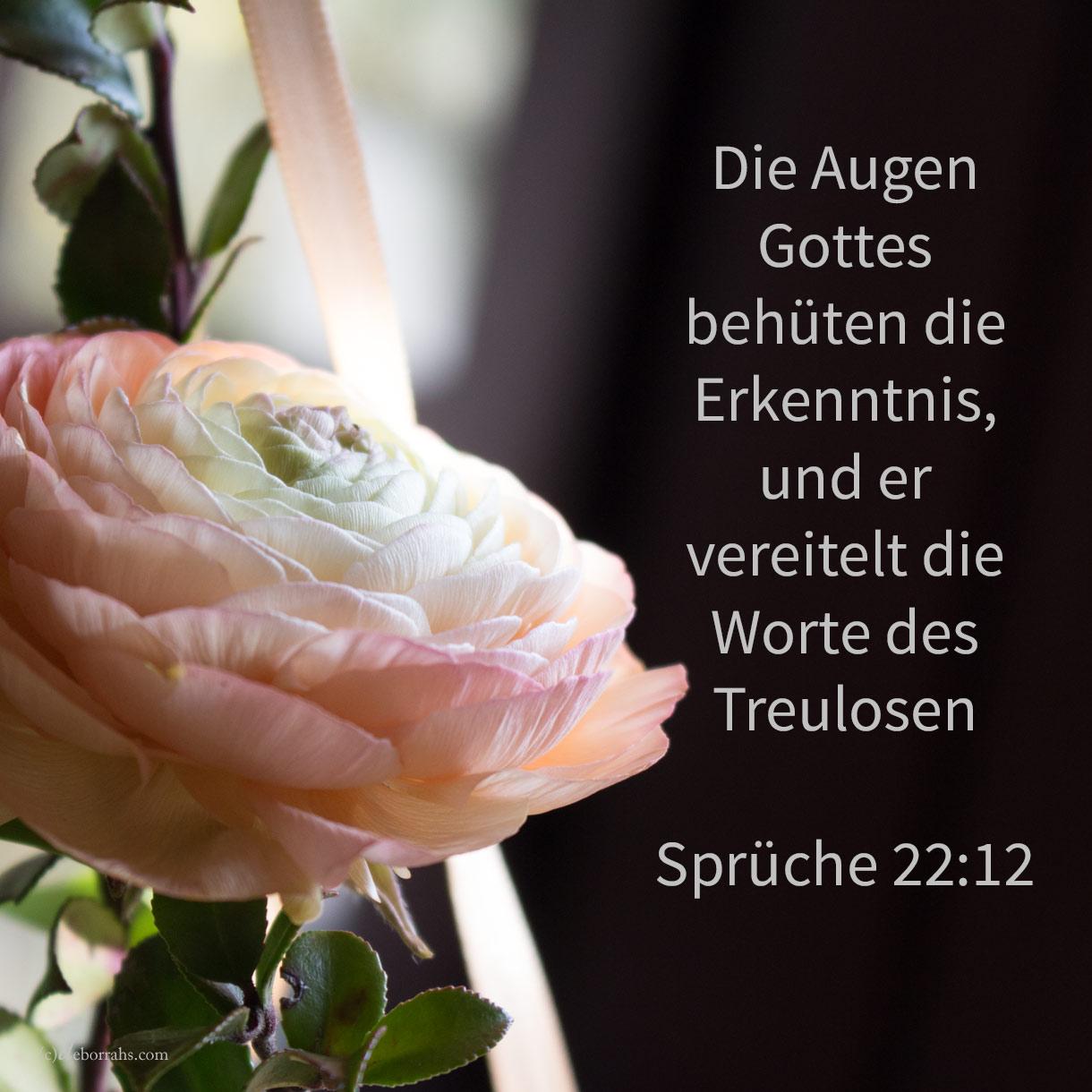 Die Augen Jehovas behüten die Erkenntnis, und er vereitelt die Worte des Treulosen ( Sprüche 22,12 )