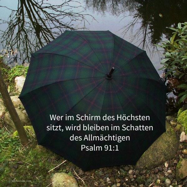 Wer im Schirm des Höchsten sitzt, wird bleiben im Schatten des Allmächtigen ( Psalm 91:1 )