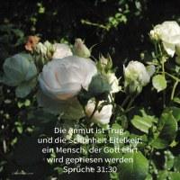 Die Anmut ist Trug, und die Schönheit Eitelkeit; ein Weib, das Jehova fürchtet, sie wird gepriesen werden ( Sprüche 31,30 )
