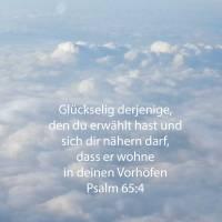 Glückselig der, den du erwählest und herzunahen lässest, dass er wohne in deinen Vorhöfen! ( Psalm 65,4 )