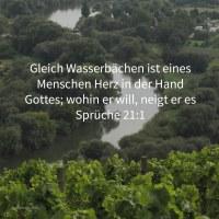 Gleiche Wasserbächen ist eines Königs Herz in der Hand Jehovas; wohin immer er will, neigt er es ( Sprüche 21,1 )