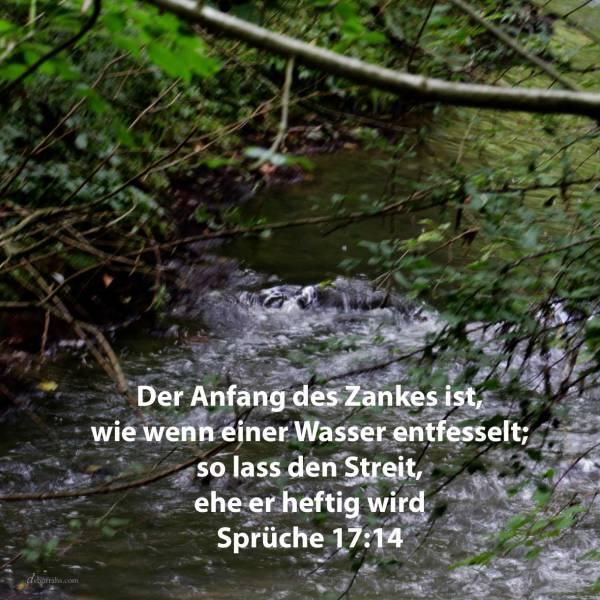 Der Anfang eines Zankes ist, wie wenn einer Wasser entfesselt; so lass den Streit, ehe er heftig wird ( Sprüche 17,14 )