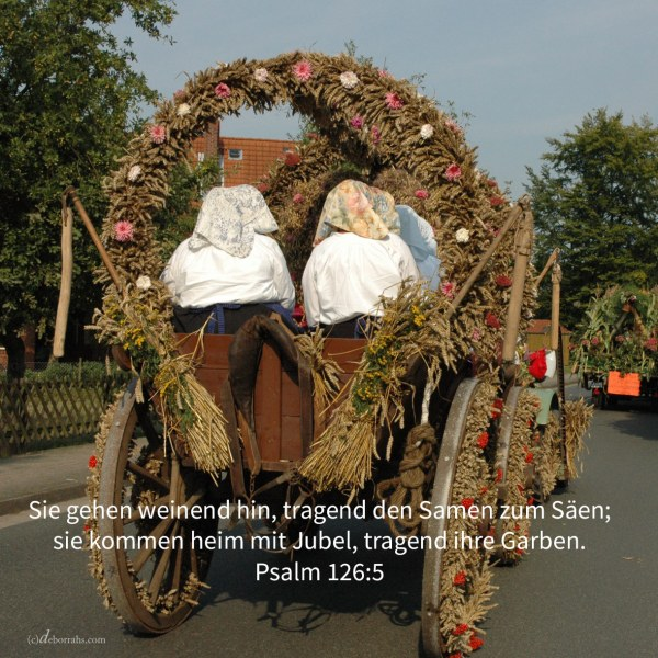 Er geht weinend hin, tragend den Samen zum Säen; er kommt heim mit Jubel, tragend seine Garben ( Psalm 126,6 )