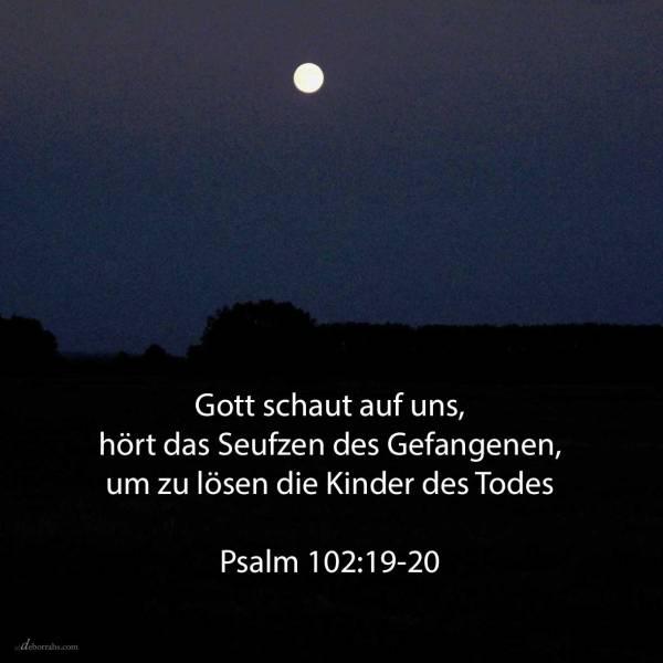 Jehovah hat herabgeschaut vom Himmel auf die Erde, um zu hören das Seufzen des Gefangenen, um zu lösen die Kinder des Todes ( Psalm 102,19-20 )