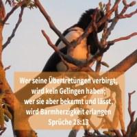 Wer seine Übertretungen verbirgt, wird kein Gelingen haben; wer sie aber bekennt und lässt, wird Barmherzigkeit erlangen ( Sprüche 28,13 )