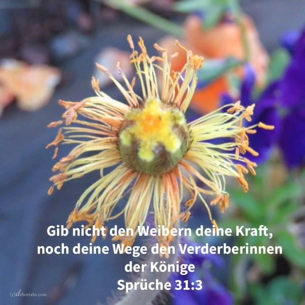 Gib nicht den Weibern deine Kraft, noch deine Wege den Verderberinnen der Könige ( Spr 31,3 )