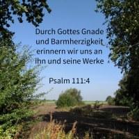 Jehovah hat ein Gedächtnis gestiftet seinen Wundertaten; gnädig und barmherzig ist Jehova ( Psalm 111,4 )