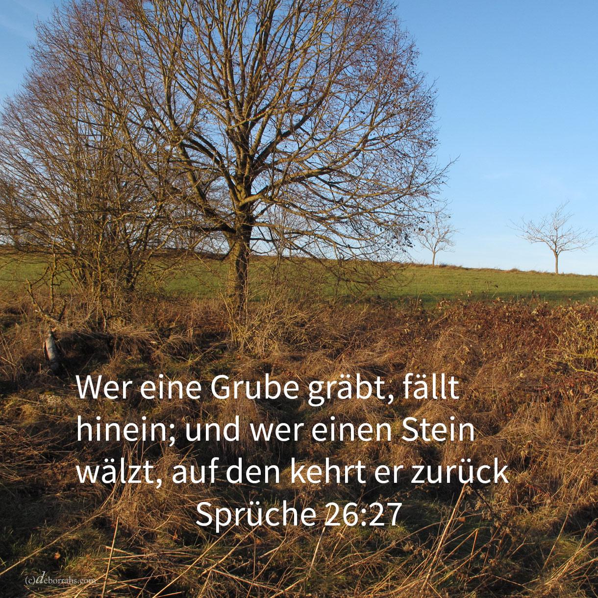 Wer eine Grube gräbt, fällt hinein; und wer einen Stein wälzt, auf den kehrt er zurück ( Sprüche 26,27 )