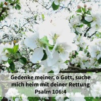 Gedenke meiner, Jehova, mit der Gunst gegen dein Volk; suche mich heim mit deiner Rettung ( Psalm 106,4 )