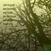 Licht ist gesät dem Gerechten, und Freude dem von Herzen Aufrichtigen ( Psalm 94,11 )