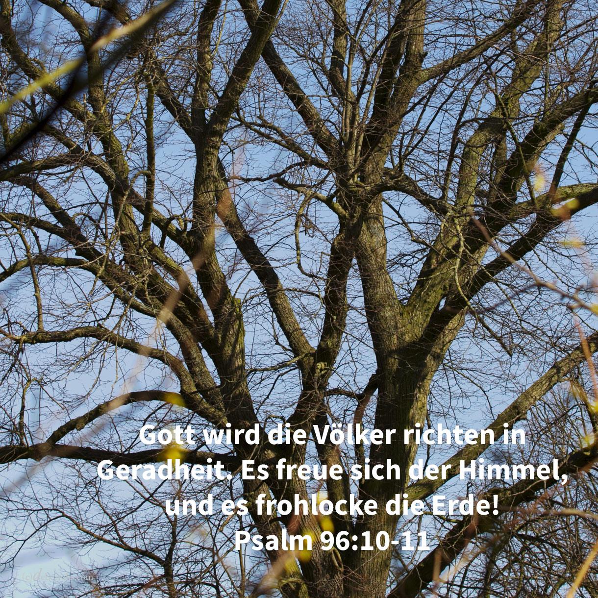 Jehova wird die Völker richten in Geradheit. Es freue sich der Himmel, und es frohlocke die Erde! ( Psalm 96,10-11 )