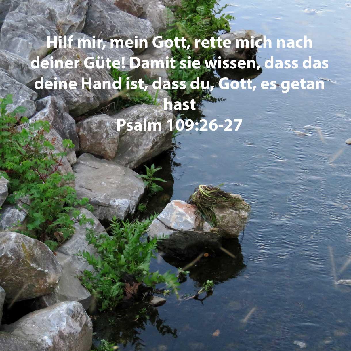 Hilf mir, Jehova, mein Gott! rette mich nach deiner Güte! Damit sie wissen, dass dies deine Hand ist, dass du, Jehova, es getan hast ( Psalm 109:26-27 )