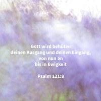 Jehova wird behüten deinen Ausgang und deinen Eingang, von nun an bis in Ewigkeit ( Psalm 121,8 )