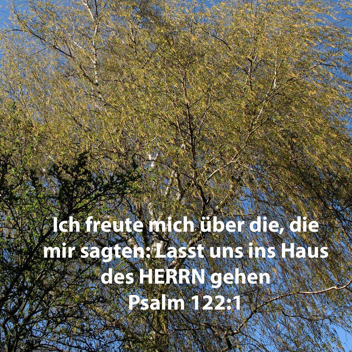Ich freute mich über die, so mir sagten: Lasst uns ins Haus des Herrn gehen! ( Psalm 122,1 )