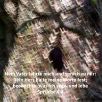 Mein Vater lehrte mich und sprach zu mir: Dein Herz halte meine Worte fest; beobahte meine Gebote und lebe ( Sprüche 4,4)