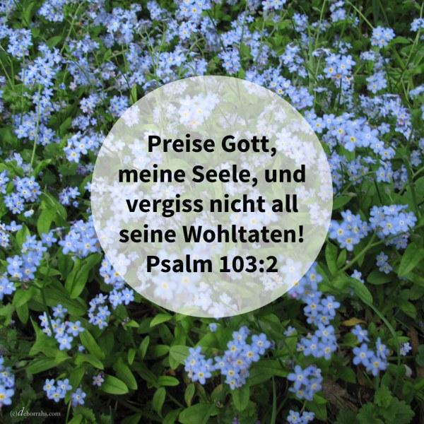 Preise Gott, meine Seele, und vergiss nicht alle seine Wohltaten! ( Psalm 103,2 )
