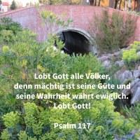 Lobet Jehova, alle Nationen! Rü+hmet ihn, alle Völker! Denn mächtig über uns ist seine Güte; und die Wahrheit Jehovas währt ewiglich. Lobet Jehova! ( Psalm 117 )