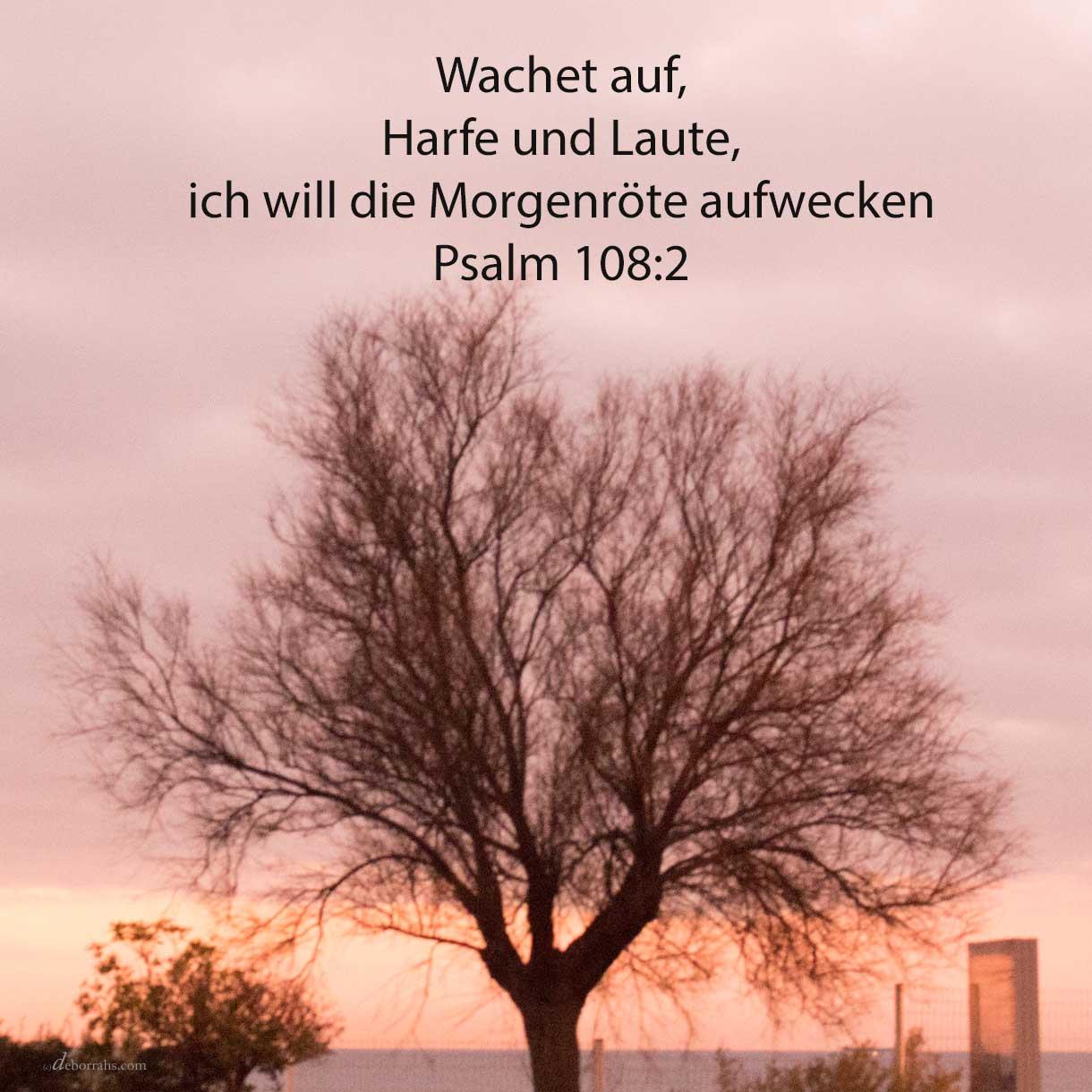 Wachet auf, Harfe und Laute! Ich will aufwecken die Morgenröte ( Psalm 108,2 )