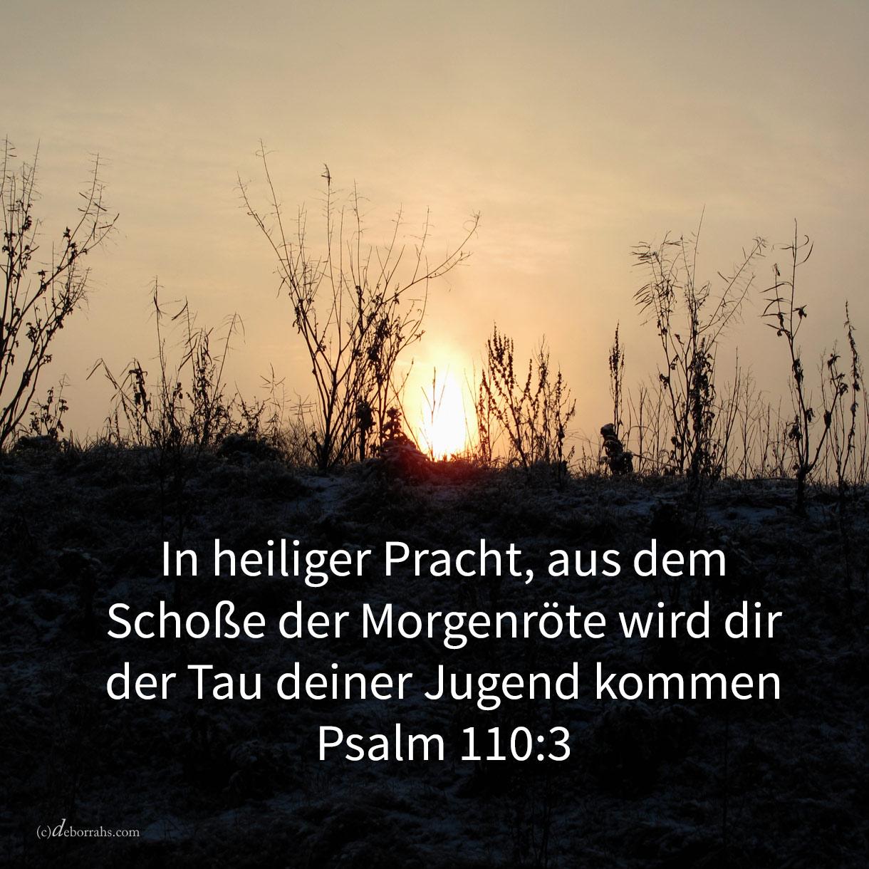 In heiliger Pracht, aus dem Schoße der Morgenröte wird dir der tau deiner Jugend kommen ( Ps 110,3 )