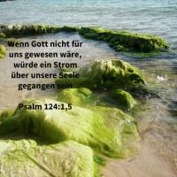 Wenn nicht Jehova für uns gewesen wäre, dann würden die Wasser uns überflutet haben, würde ein Strom über unsere Seele gegangen sein ( Psalm 124,1;4 )
