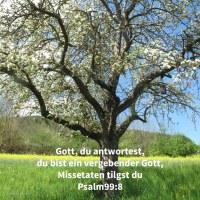 Jehova, unser Gott, du hast ihnen geantwortet! ein vergebender Gott warst du ihnen, und ein Rächer ihrer Taten ( Psalm 99,8 )