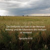Die Furcht Jehovas ist der Weisheit Anfang; und die Erkenntnis des Heiligen ist Verstand ( Sprüche 9,10 )