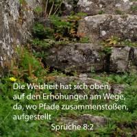 Die Weisheit hat sich oben auf den Erhöhrungen am Eweg, da wo Pfade zusammenstoßen, aufgestellt ( Sprüche 8,2 )