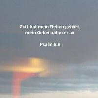 Jehova hat mein Flehen gehört; mein Gebet nahm Jehova an ( Psalm 6:9 )